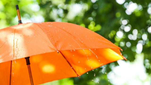 0歳児 室内遊び 雨の日